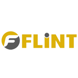 Flint International